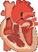 Biofyzika srdca a ciev